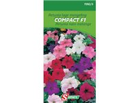 Occasion, Sachet Graines Petunia Nain Mélange Somers 'Compact F1' d'occasion