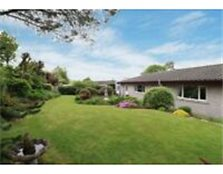 Lovely 4 bed bungalow with beautiful garden and ornamental fish pond