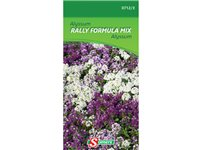 Sachet Graines Alyssum Somers 'Rally Fomrula Mix' d'occasion