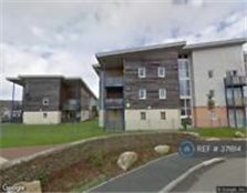 2 bedroom flat in Sefton House, Tuckingmill, Camborne, TR14 (2 bed)