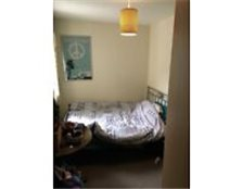 Room to let awesome flat st George bristol Kingswood