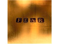 V2 RECORDS Marillion - F.E.A.R. CD