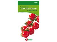Sachet Graines Tomate Cocktail Pancho Somers d'occasion