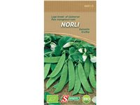 Sachet Graines Pois Mangetout Nain Somers 'Norli', occasion d'occasion