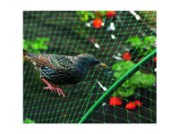 Filet De Protection 'Birdnet' Vert 2 X 10 M