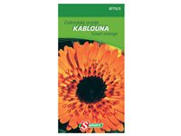 Souci Orange Kablouna