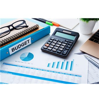 Accounting for website costs - The website of chartered accountants