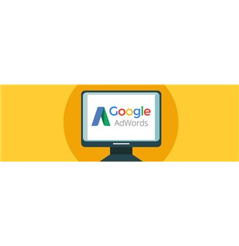 VSEs and SMEs: how much does a marketing campaign on AdWords cost?